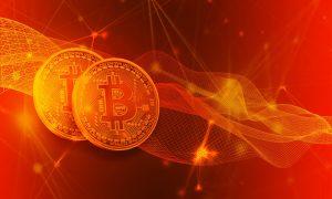 Zusammenarbeit laut Bitcoin Profit